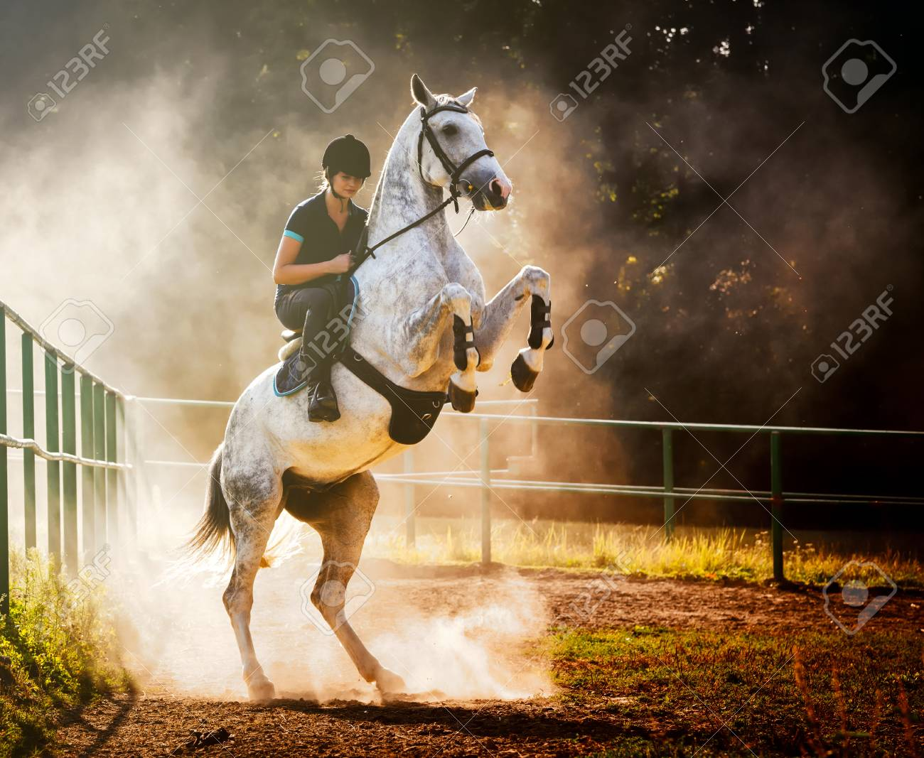 Woman Riding A Horse In Sand Dust Beautiful Pose On Hind Legs Stock Photo Picture And Royalty Free Image Image 86802365