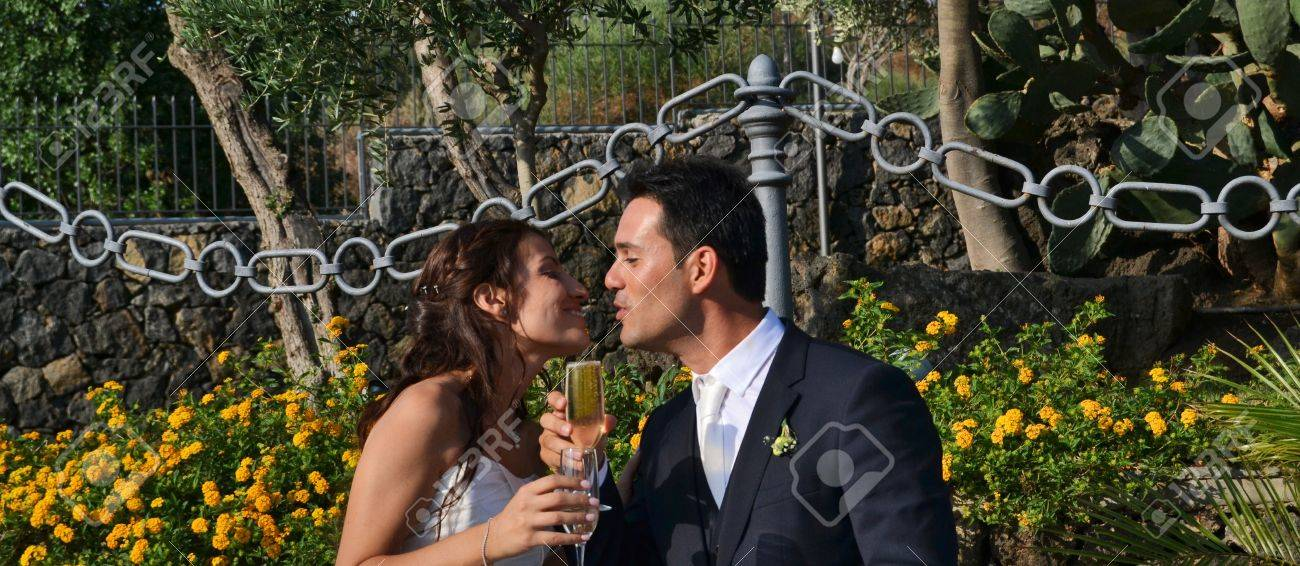 Toast to the bride and groom Stock Photo - 15095841