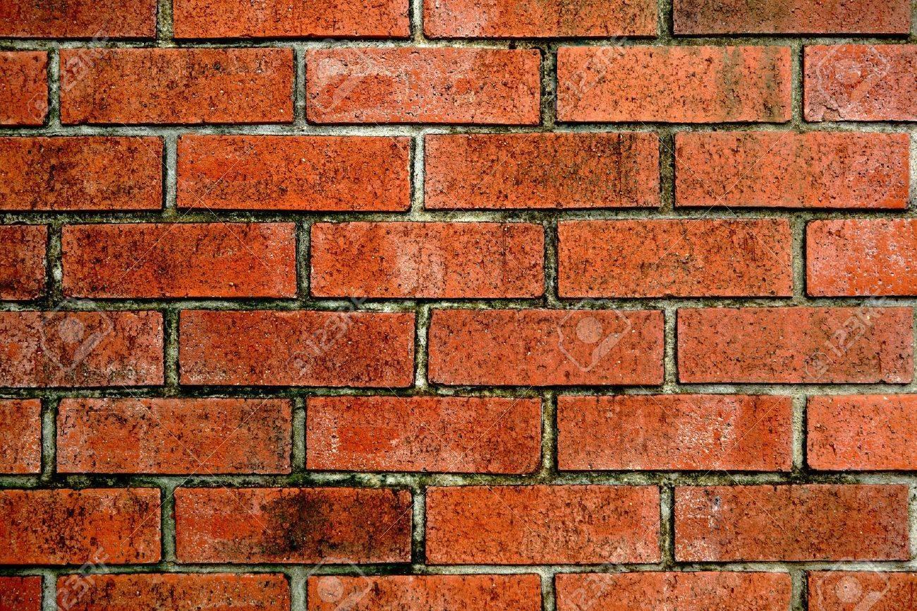 Mauer ziegelsteine