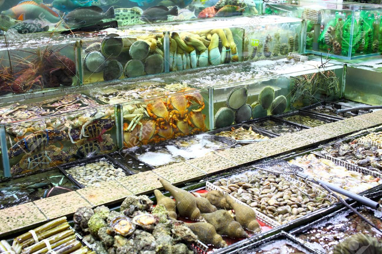Fish tank in market Stock Photo - 20056837