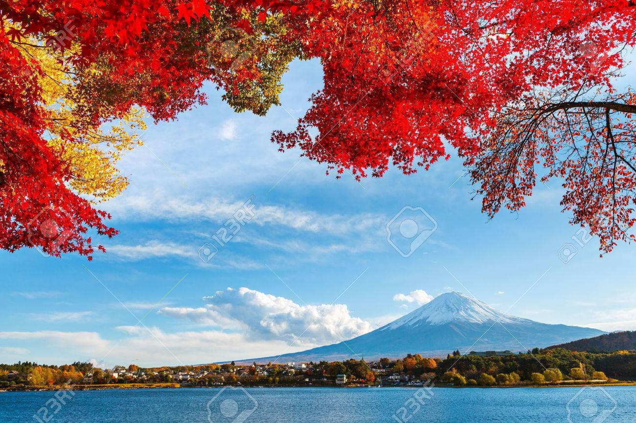 Mt. Fuji in autumn - 22269413