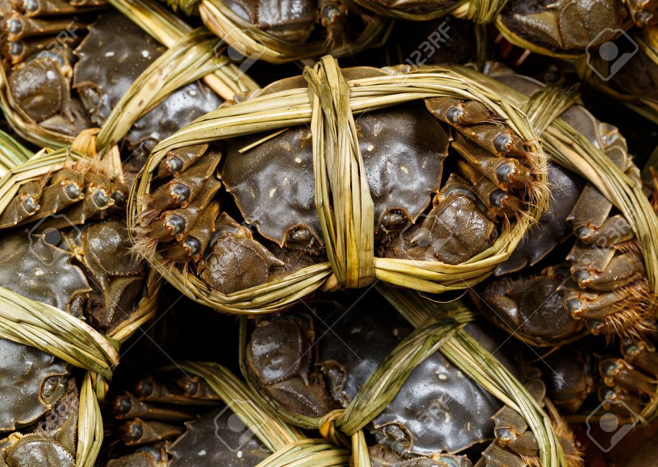 Group of Chinese hairy crabs Stock Photo - 33271373