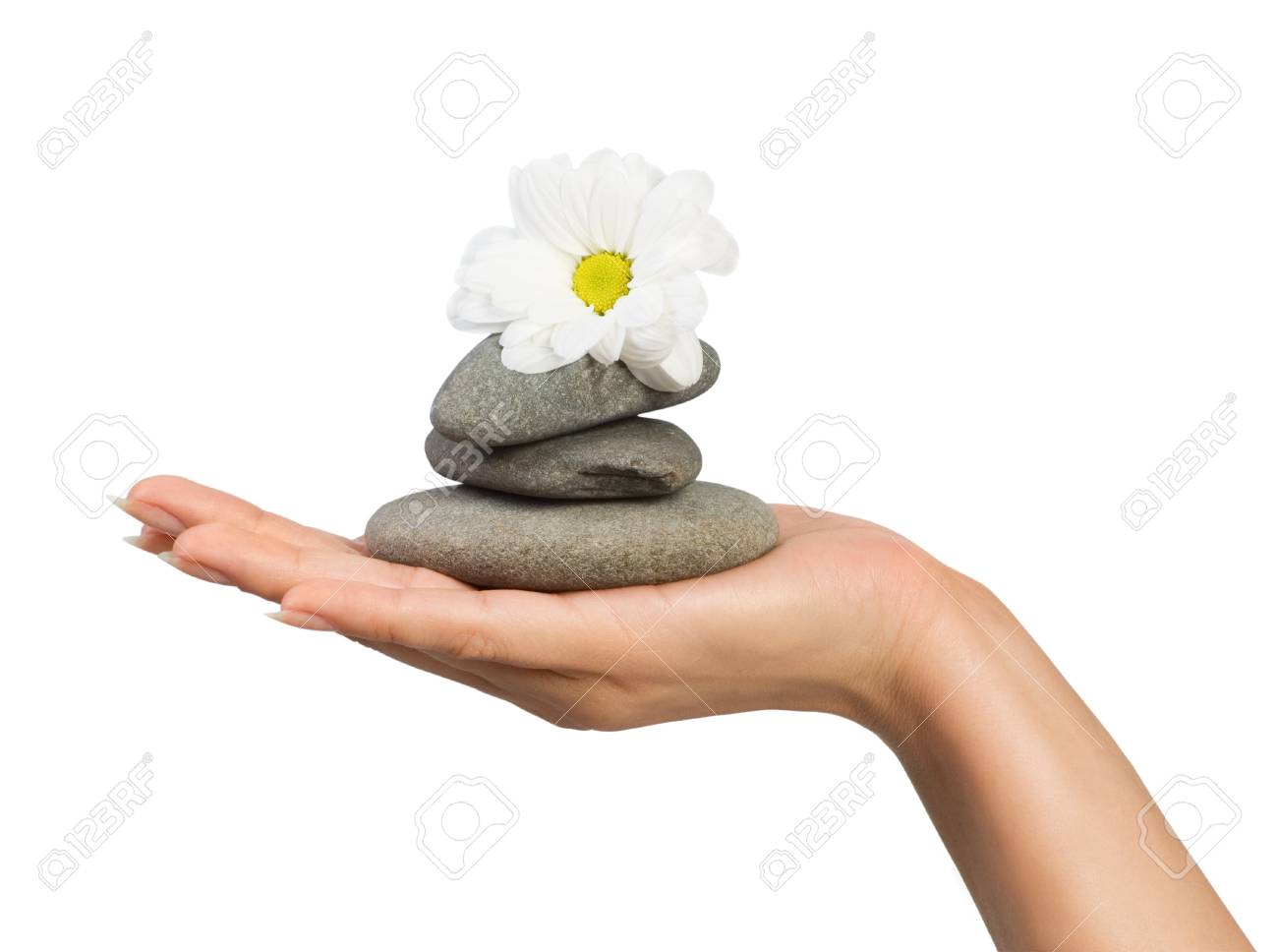 beautiful female hand with flower and stones isolated jn white Stock Photo - 8485568