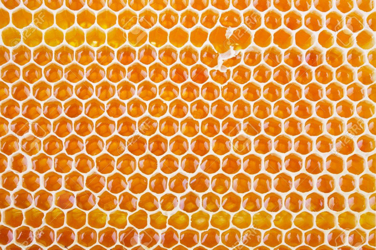 fresh golden honeycomb shot from close range as a background Stock Photo - 18621284