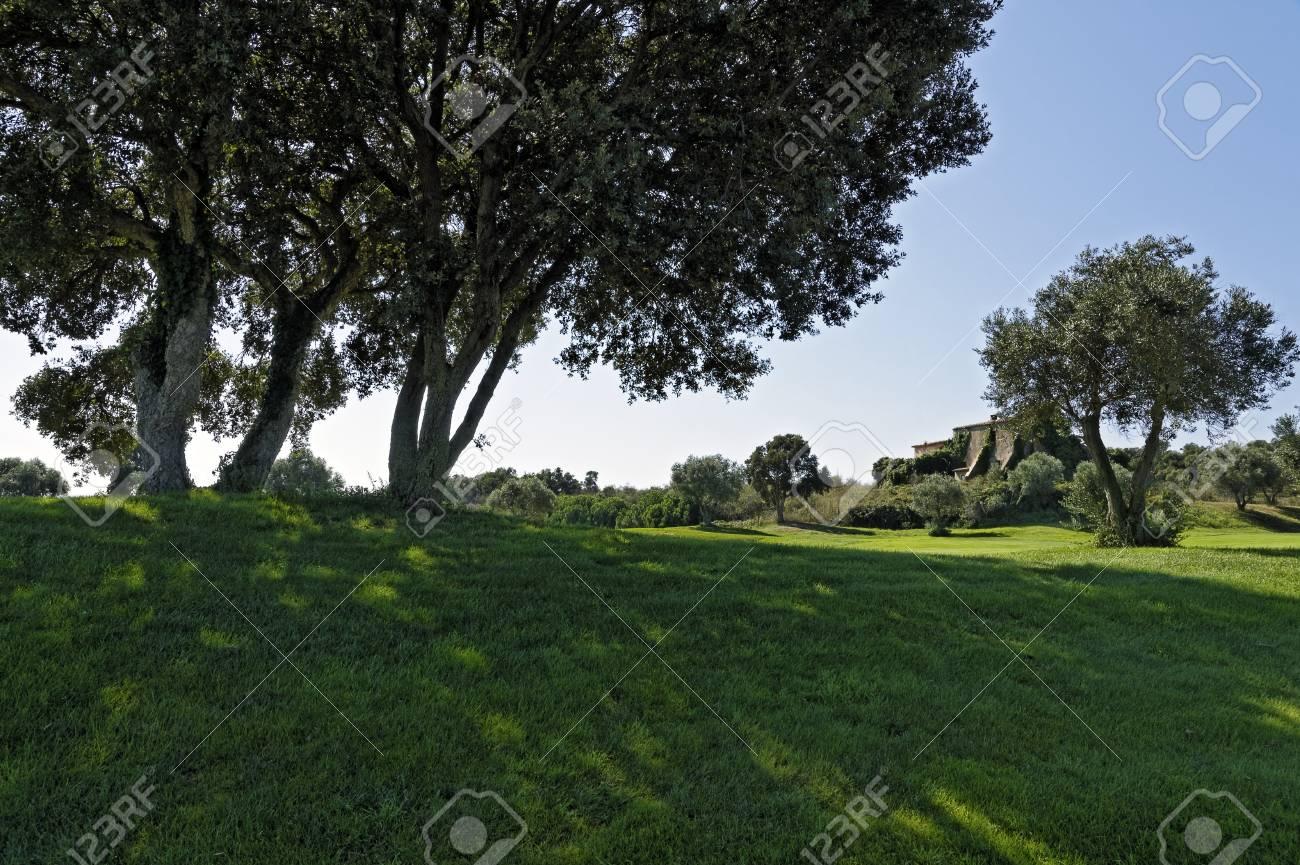 Tranquil rural landscape  Spain, Costa Brava Stock Photo - 13058773