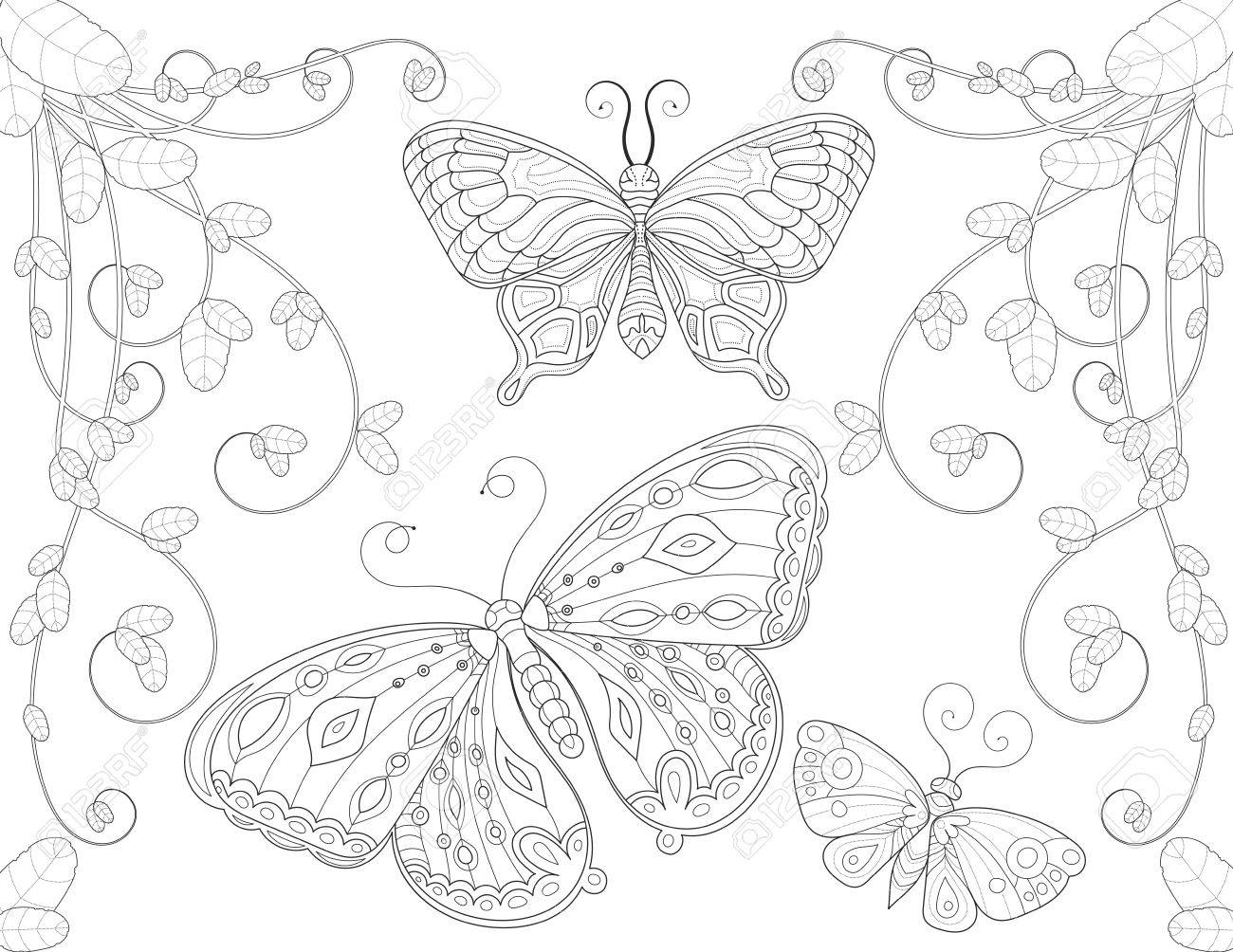 Coloring Book Page For Adult With Butterfly Flowers And Curls