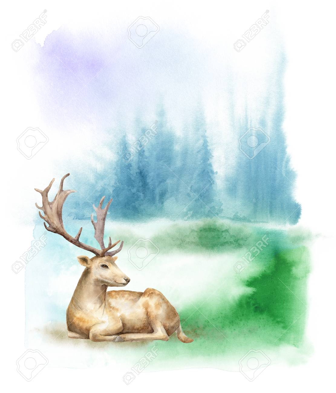 The Best Forest Watercolor Deer