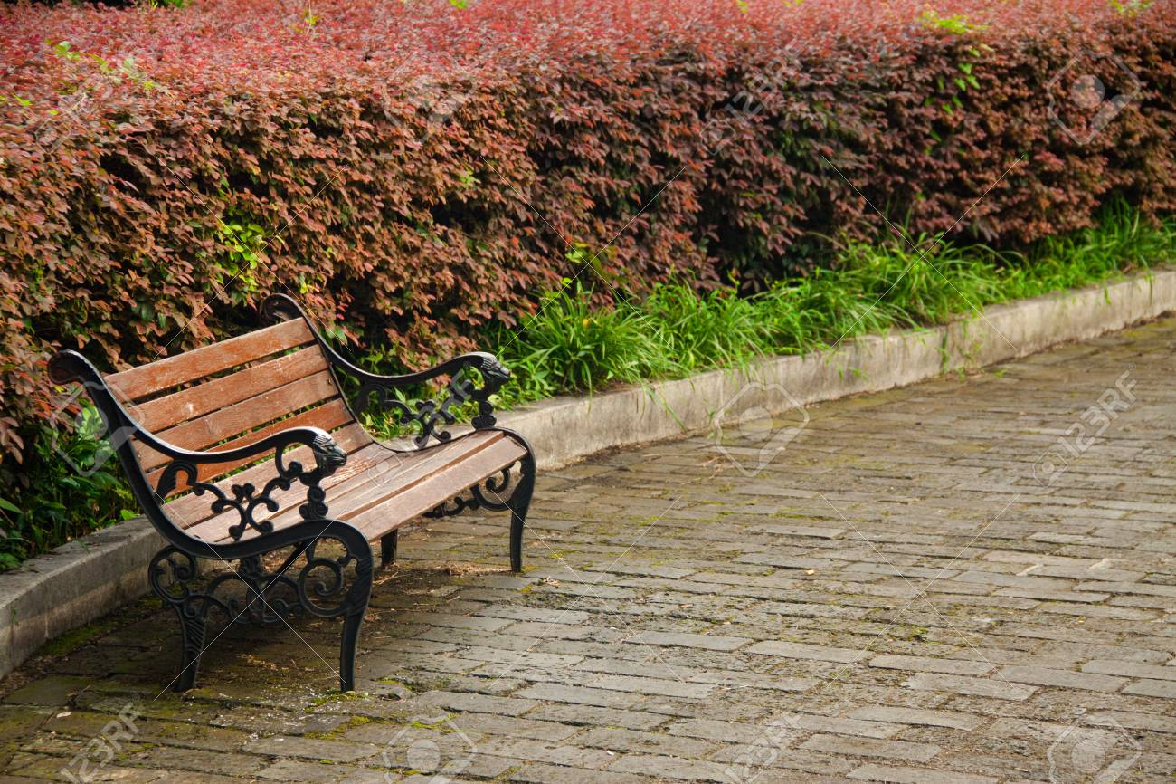 Bench in the park - 41551097
