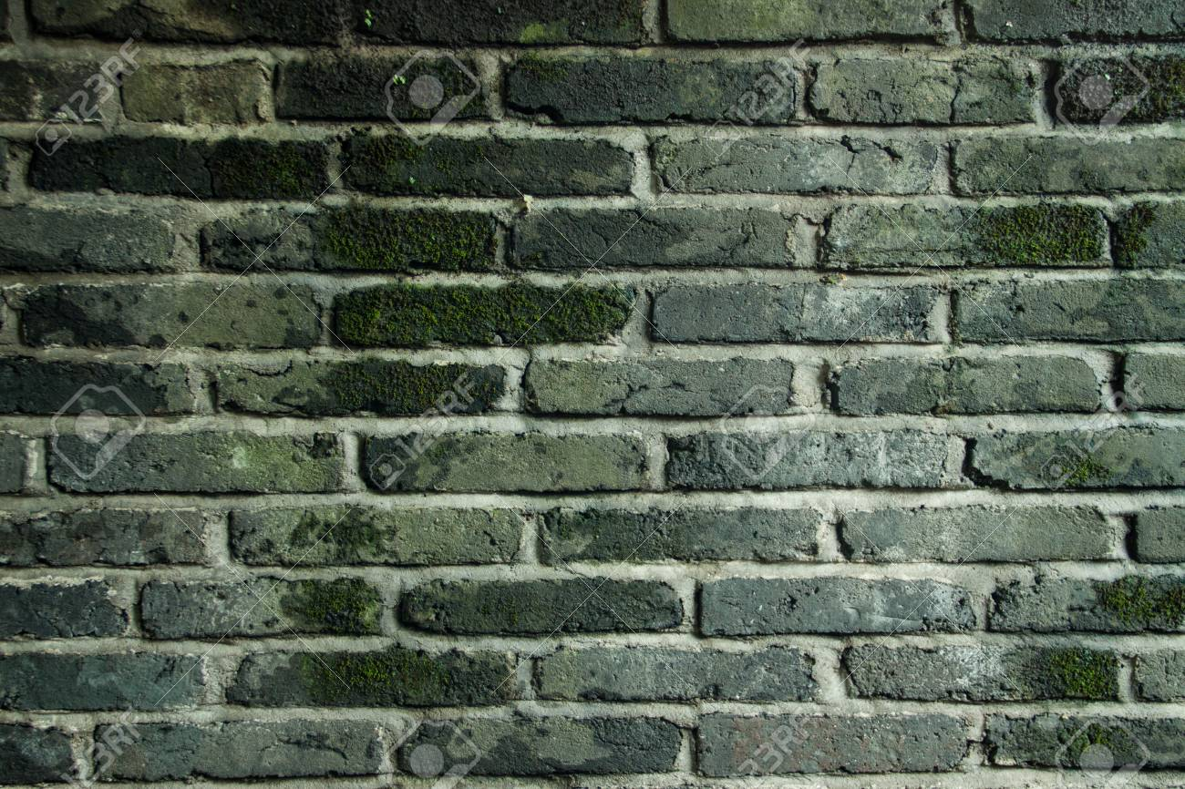 Brick wall with moss growing out of it - 41551131