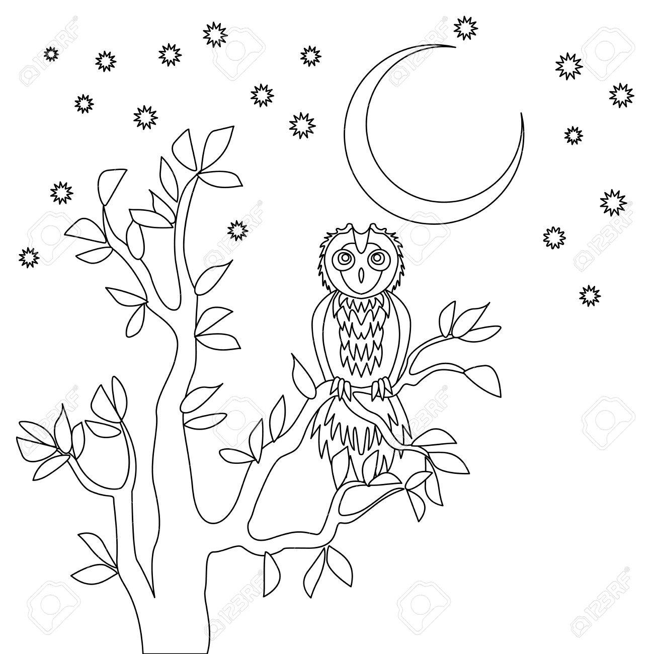 Cute Vector Owl. Coloring Book. Owl Sitting On The Tree At The ...