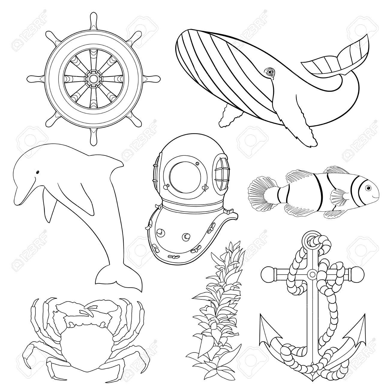Conjunto De Ilustraciones Para Niños Para Colorear Animales Marinos Y Objetos En Blanco Y Negro Dibujado A Mano Colección Con Animales Oceánicos
