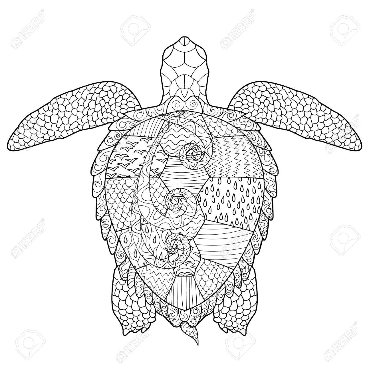 Meeresschildkröte Mit Hohen Details. Erwachsene Antistress ...