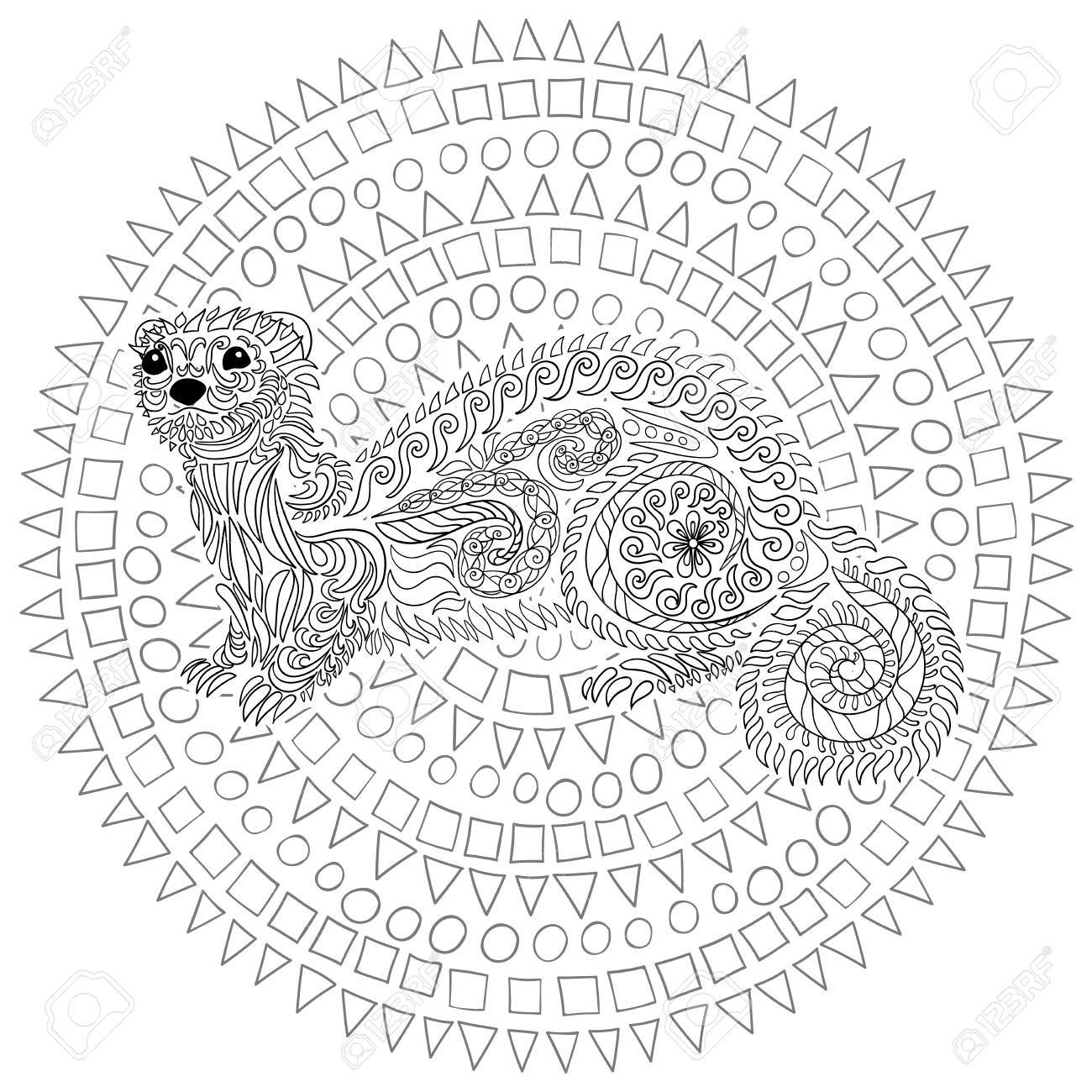 coloriage anti stress furet