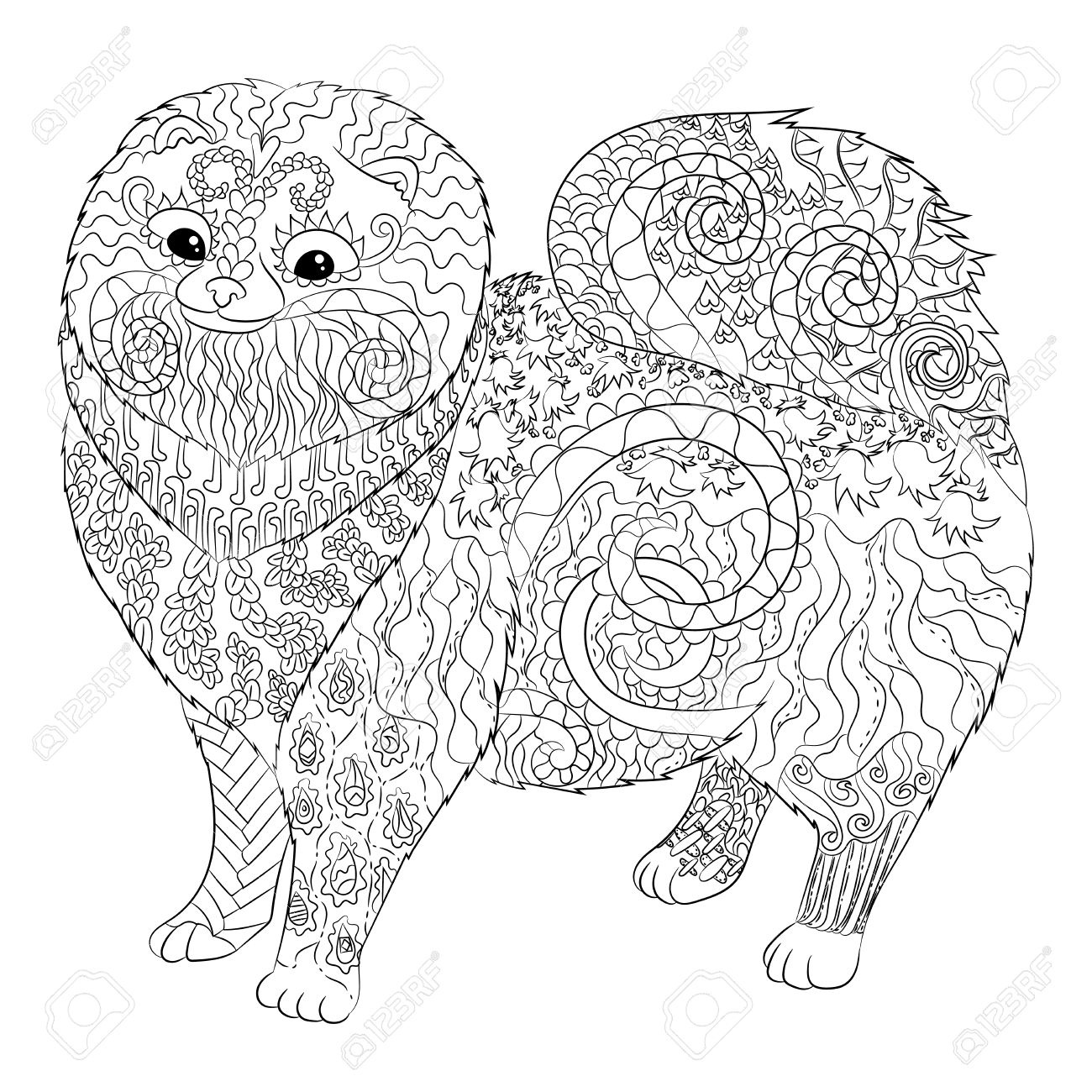 High Detail Patterned Pomeranian Dog In Style. Adult Coloring ...