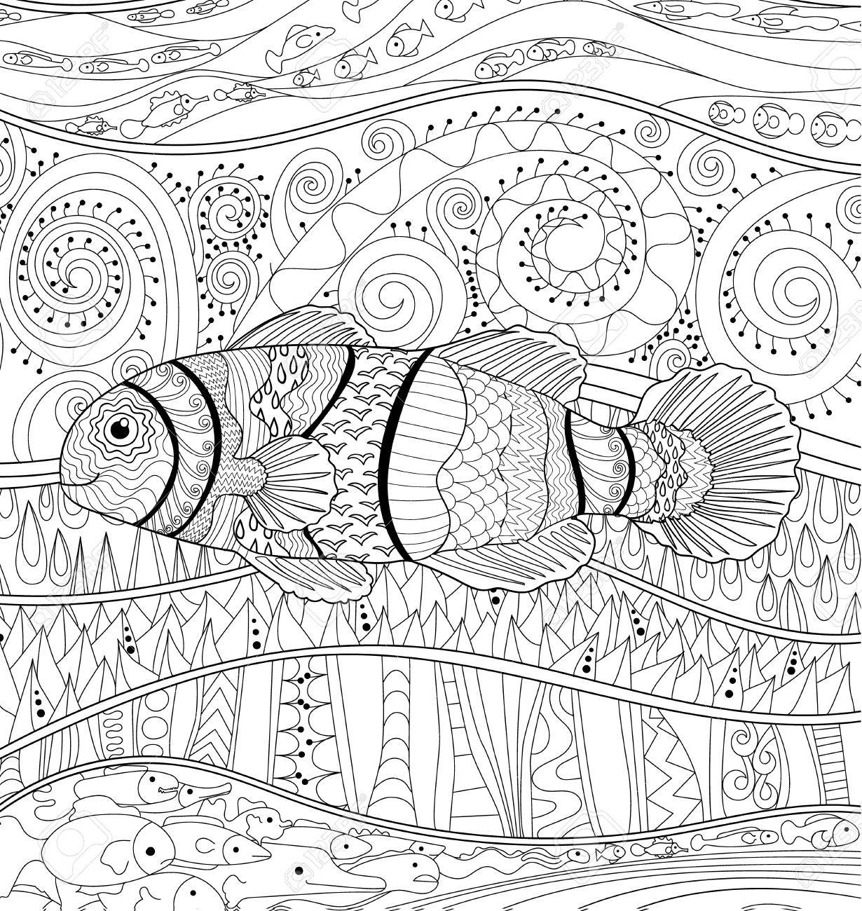 Clownfish with high details. Adult antistress coloring page...