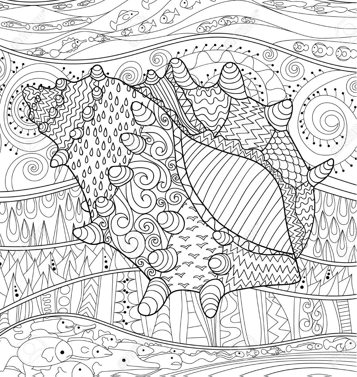seashell with high details antistress coloring page black