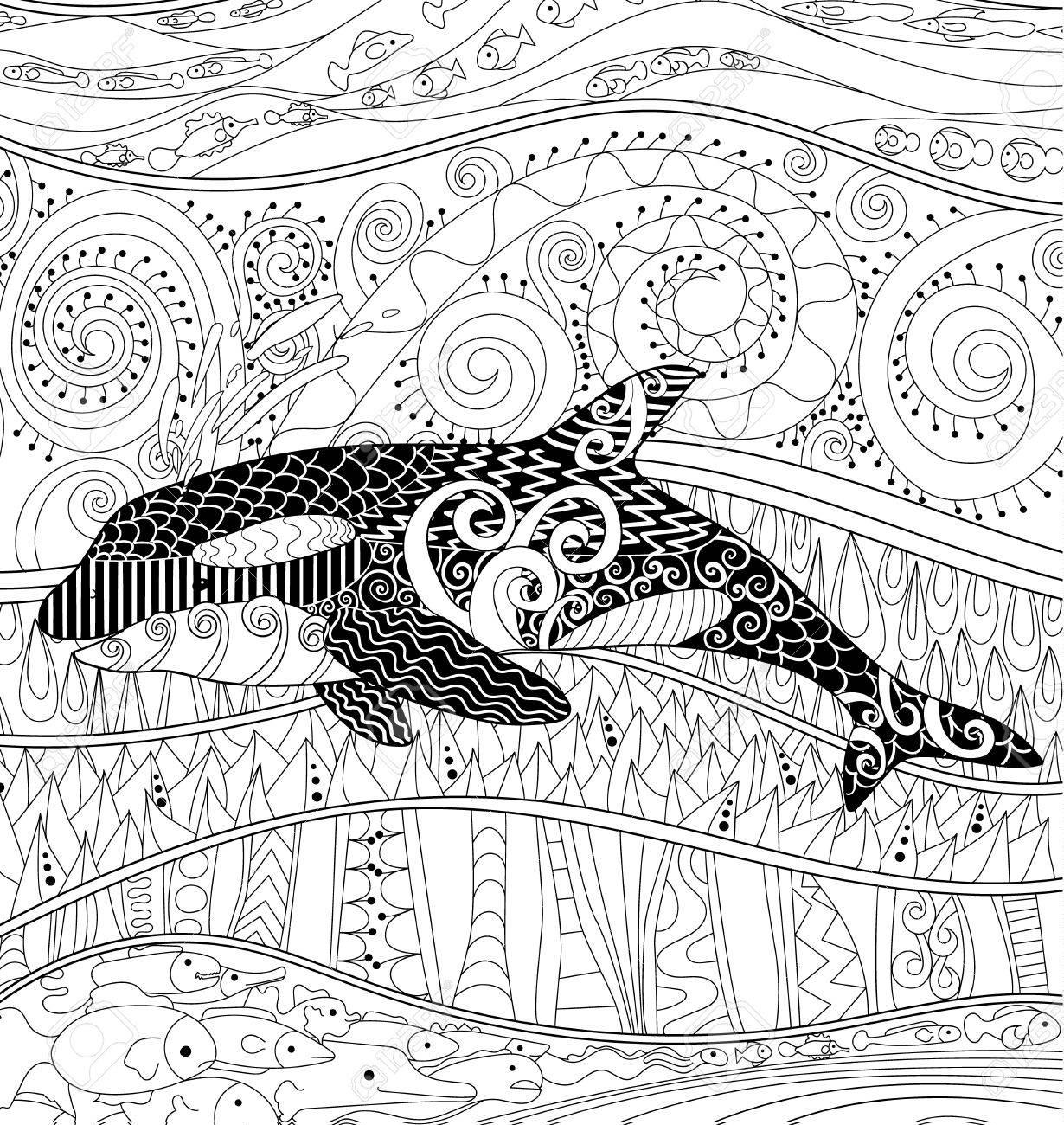 Orque Avec Des Détails élevés Adulte Coloriages Antistress Avec Orque Animaux Blanc Noir Pour L Art Thérapie Abstract Pattern Avec Des éléments