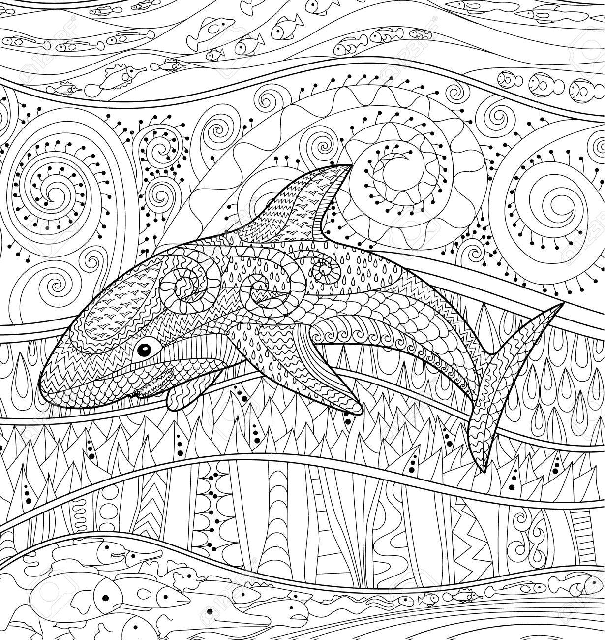 Happy shark with high details. Adult antistress coloring page...