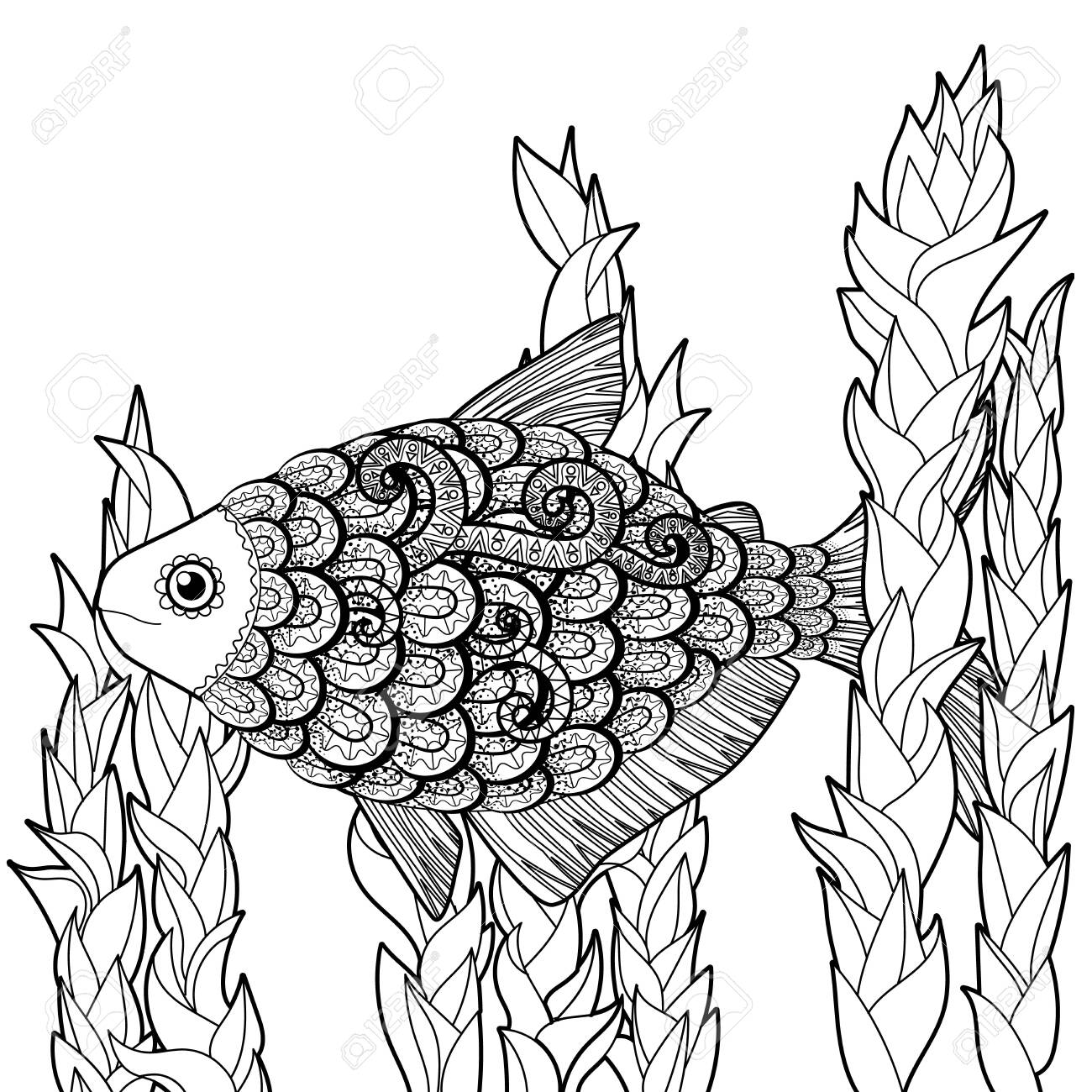 - Bass Fish With High Details. Adult Antistress Coloring Page