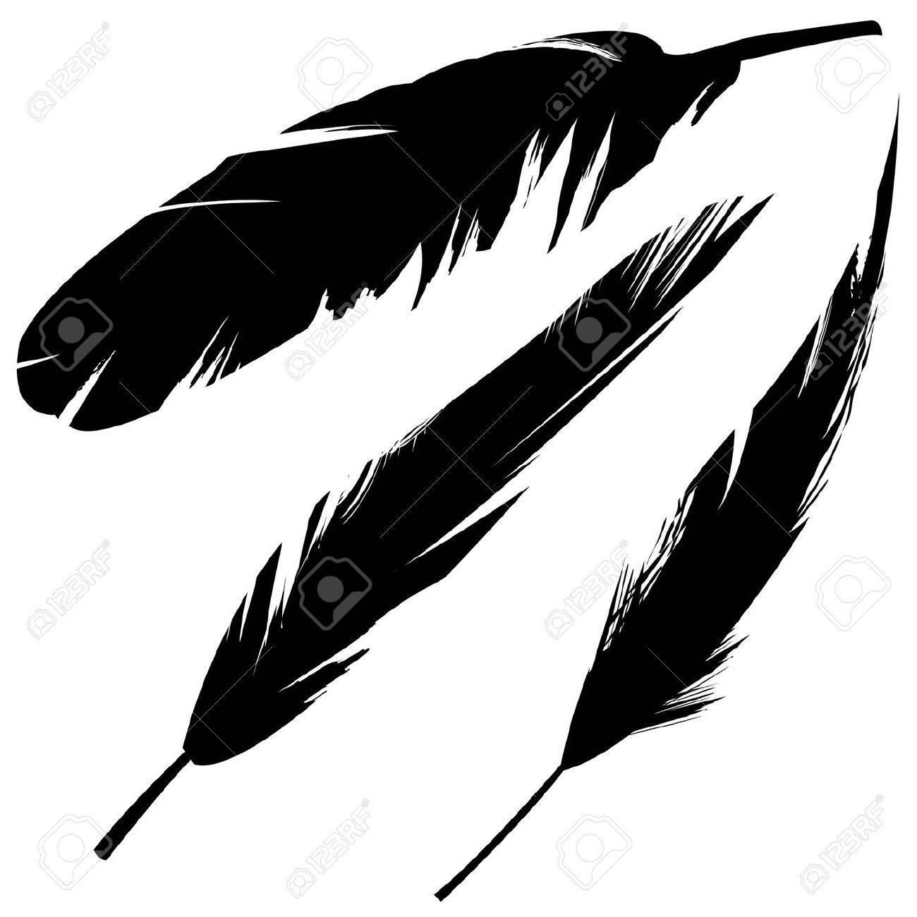 グランジ スタイルで様々 な鳥の羽のベクトル イラストのイラスト素材