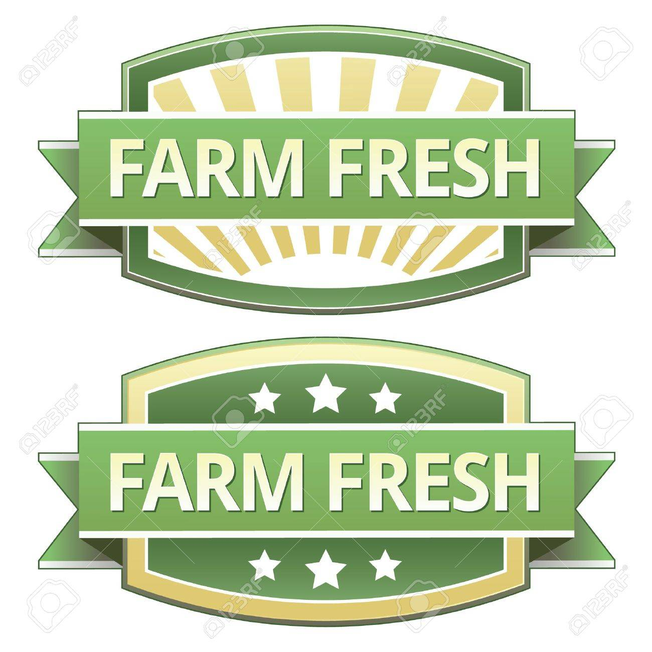 Farm Fresh on yellow and green food label, sticker, button or icon for use on packaging, print, advertising, and websites. Stock Vector - 11575018
