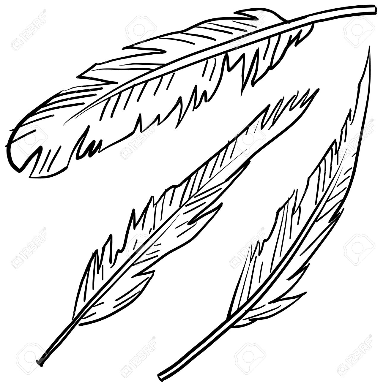 Doodle style bird feathers illustration in vector format Stock Vector - 14420377