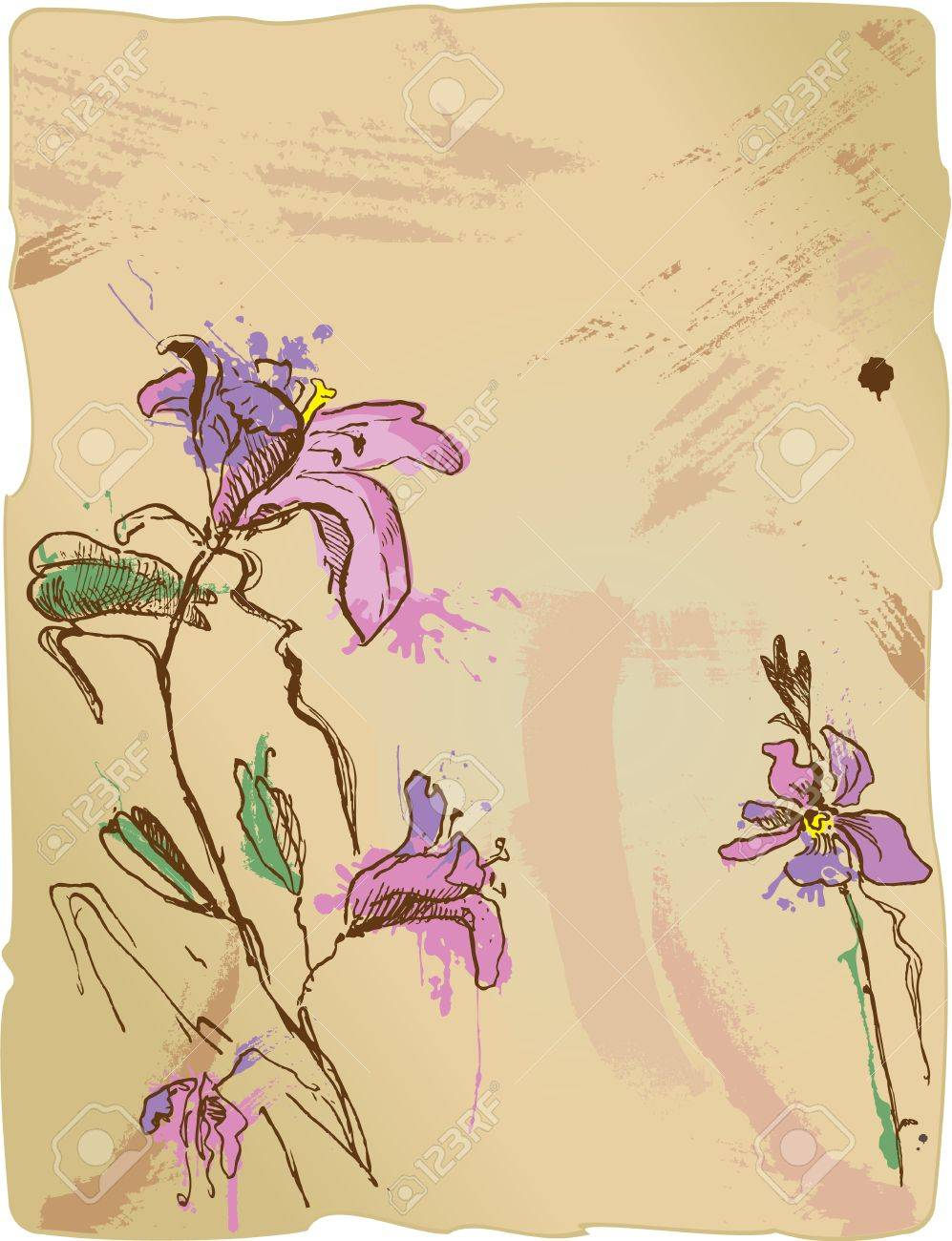 aquarelle sketch of iris flowers on old parchment with empty space for your text Stock Vector - 11101474