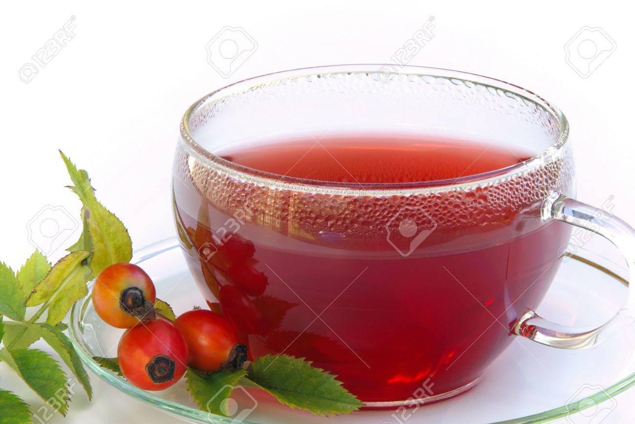 hip tea Stock Photo - 11302891