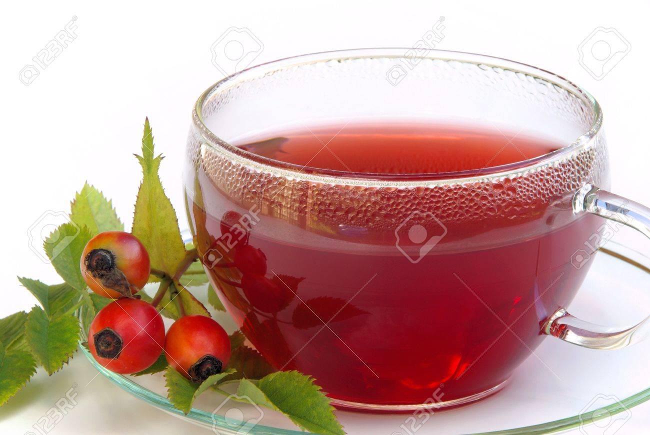 http://previews.123rf.com/images/lianem/lianem0907/lianem090700177/5328715-rose-hip-tea-Stock-Photo.jpg