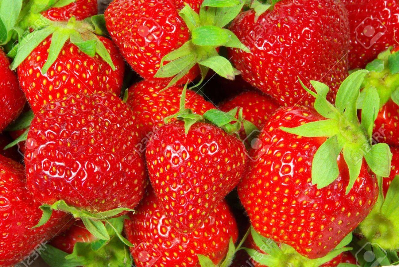 strawberry 1 Stock Photo - 6114044