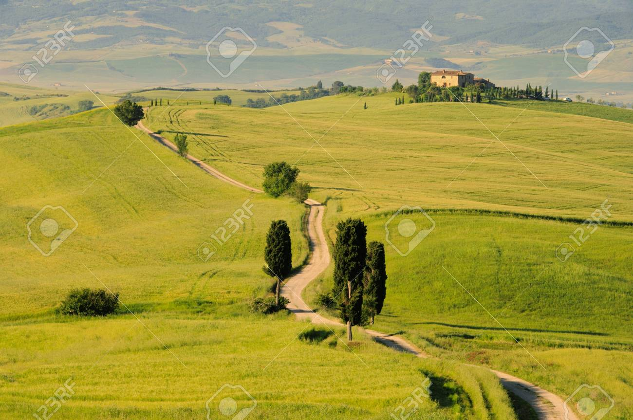 Podere Terrapille 02 Stock Photo - 7335383
