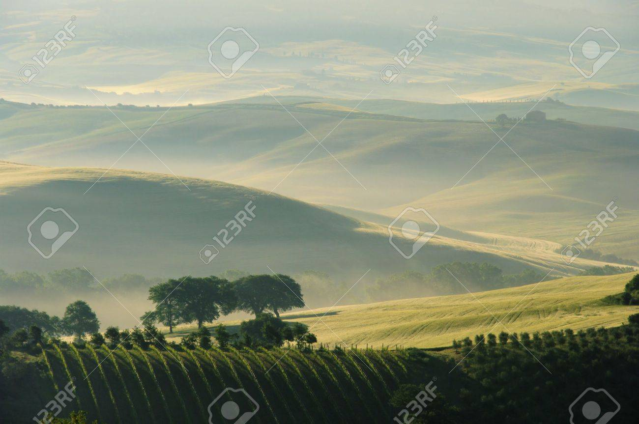 tuscany Stock Photo - 11103344