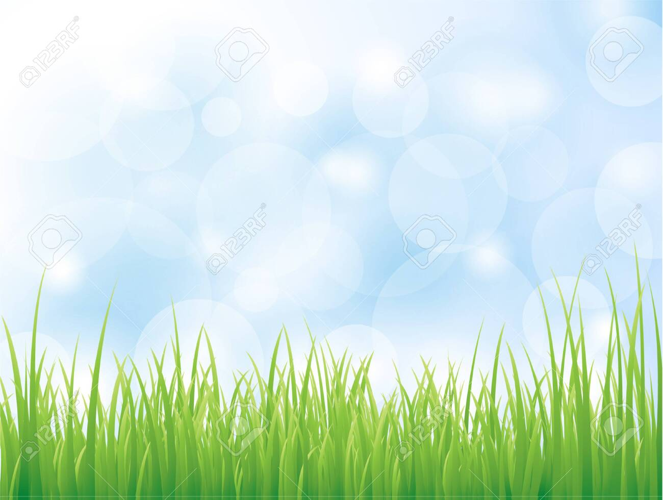 Vector background with green grass - 150587233