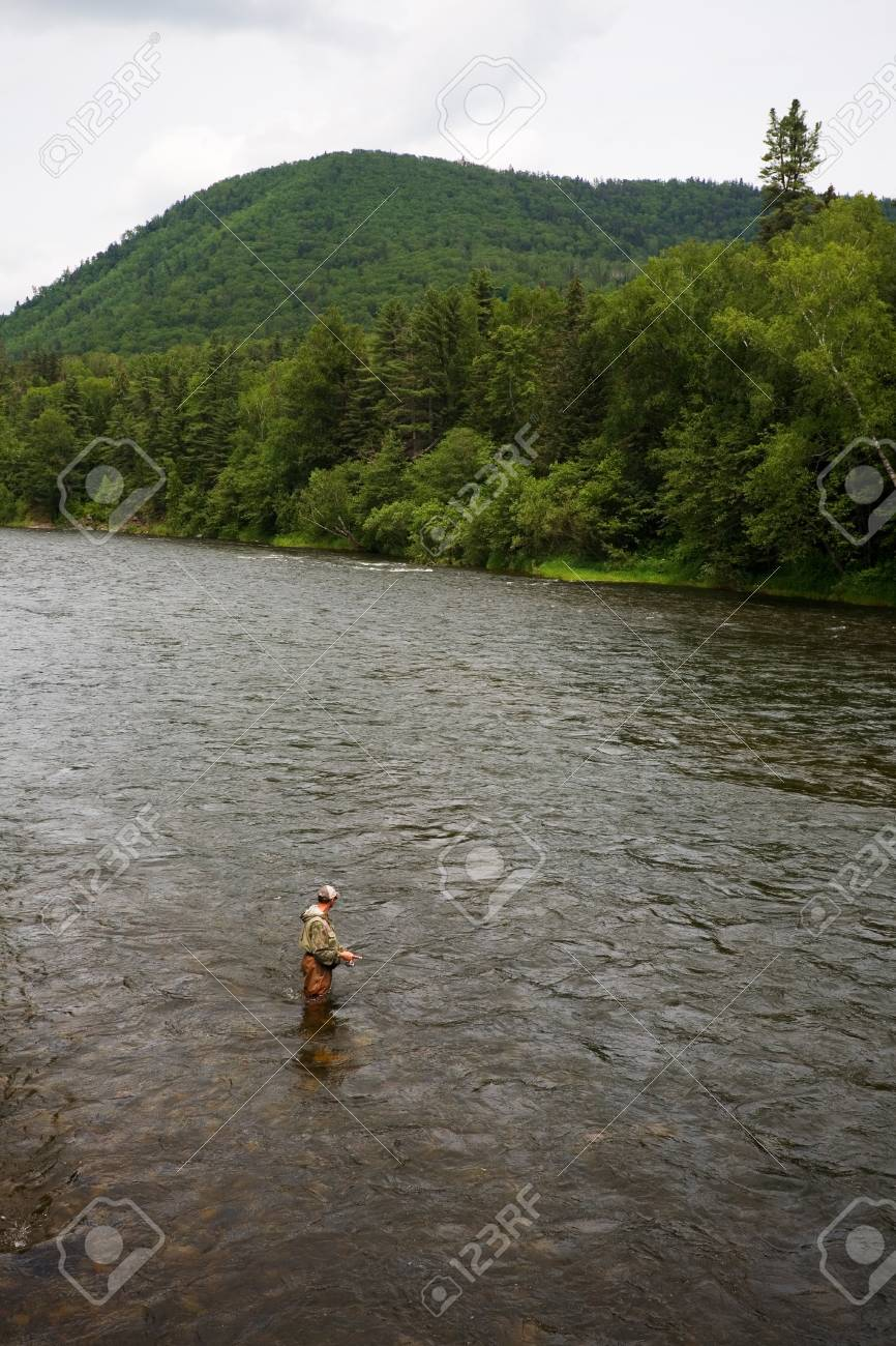 Fisherman catches of salmon and trout in the river. Stock Photo - 12600324