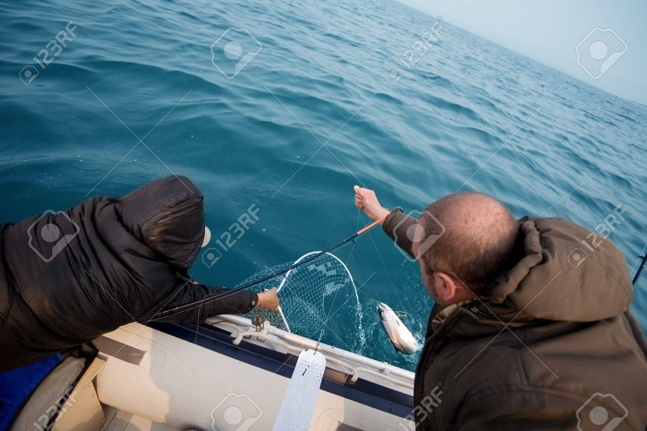 Fishermen pull salmon caught. Trolling in the sea. Stock Photo - 13718819
