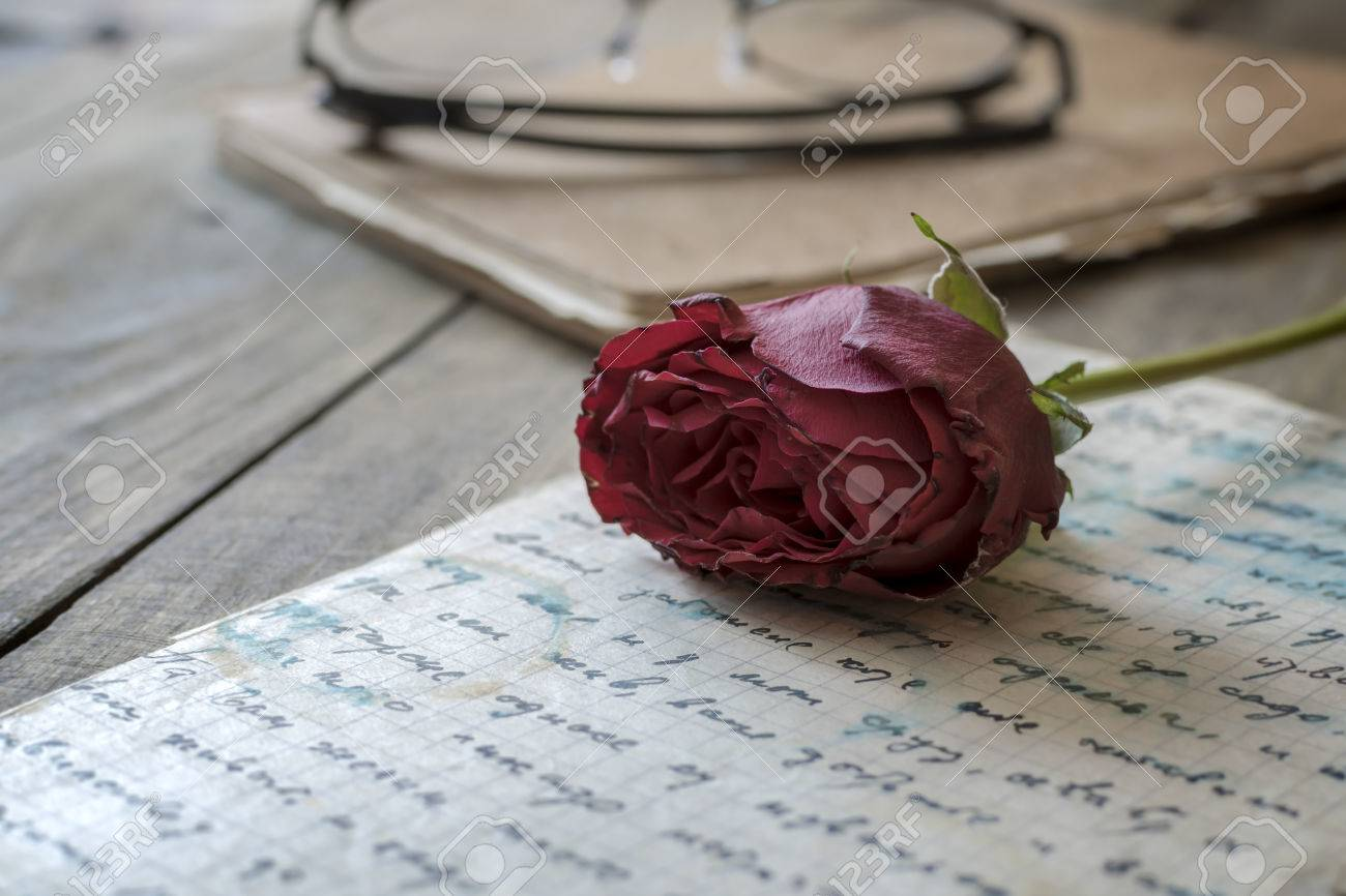 rose laying on top of a love letter close up stock photo 54782100