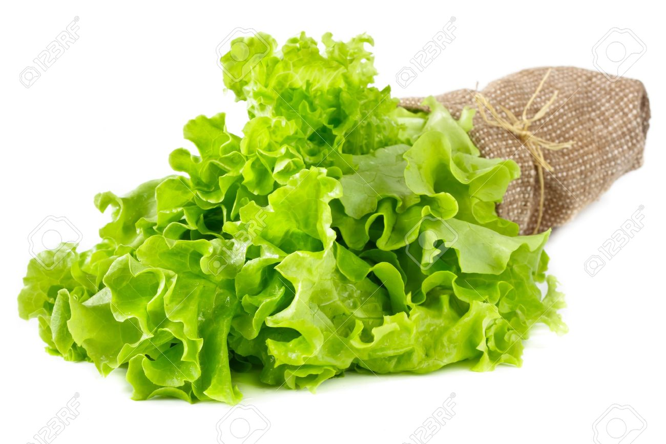Bunch of fresh green salad leaves in a fabric bag on white. Stock Photo - 9260569