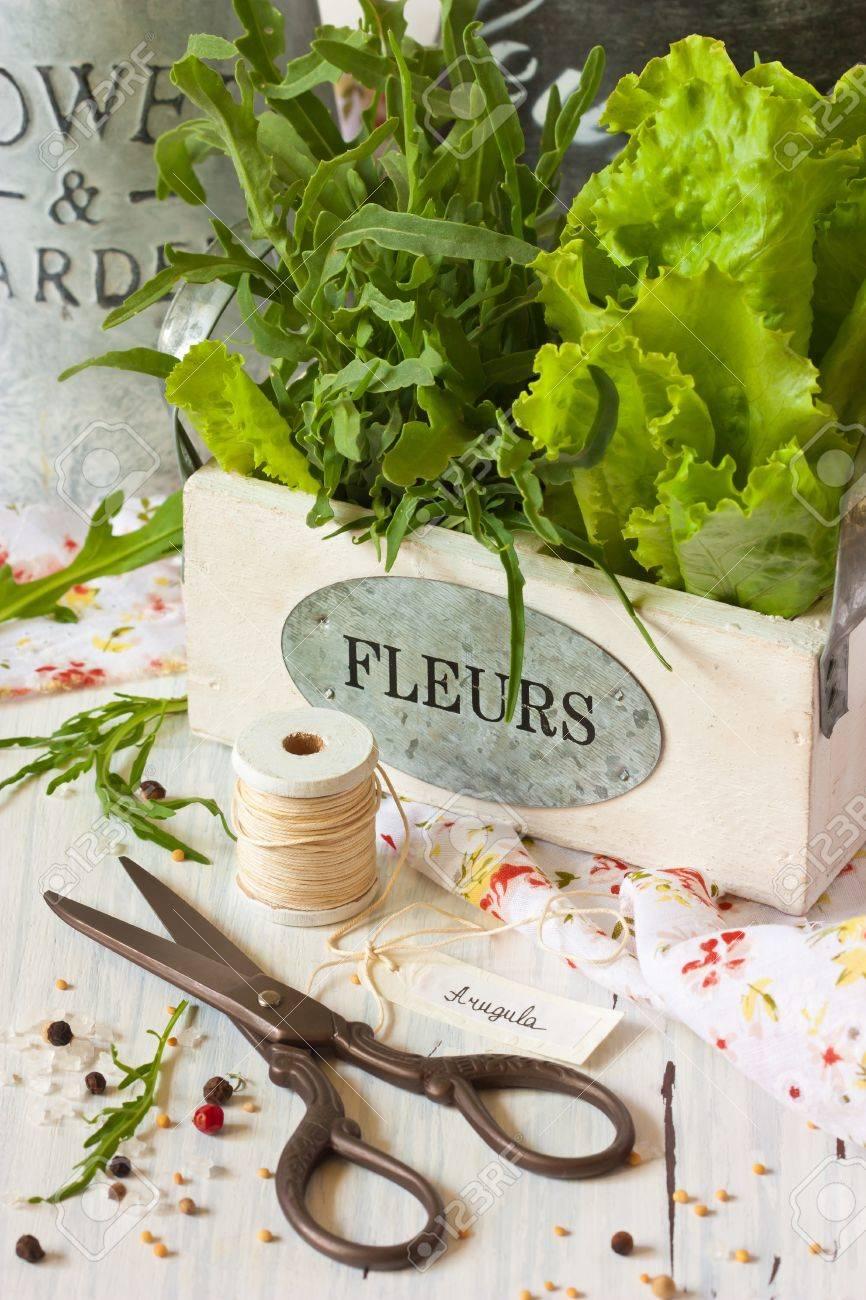 Kitchen Garden Herbs Fresh Kitchen Garden Herbs Scissors And Kitchen Twine On A White