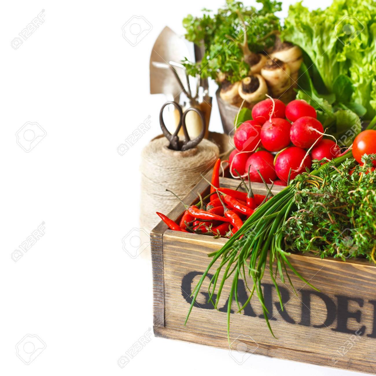 Fresh Organic Kitchen Garden Vegetables On Vintage Wooden Box On A ...