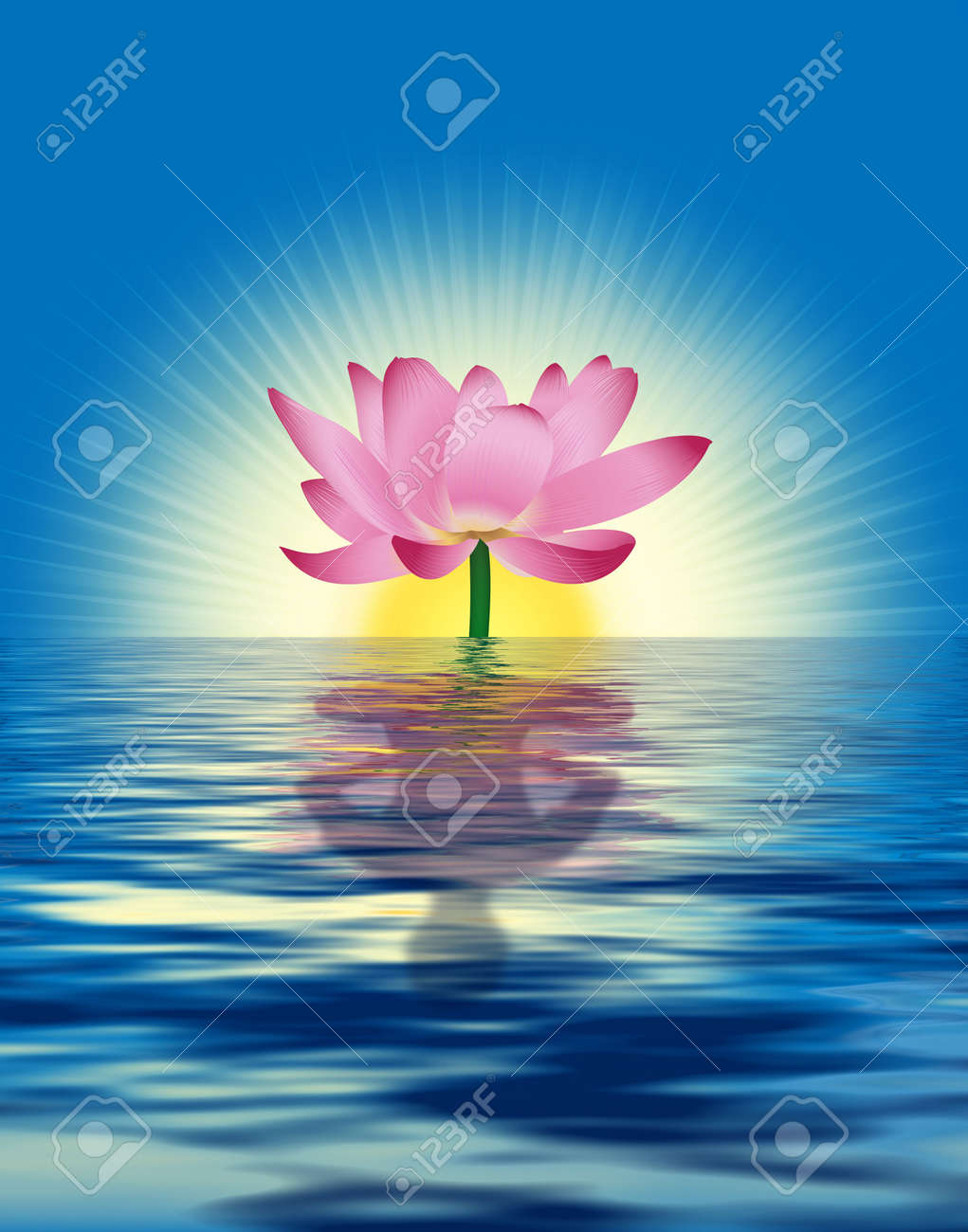 Lotus Reflects Persons Figure In Water Digital Illustration
