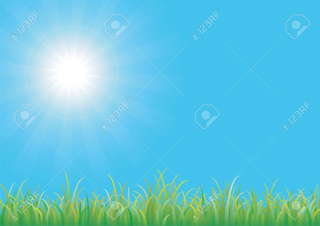 Blue sky with green grass Stock Vector - 9490450