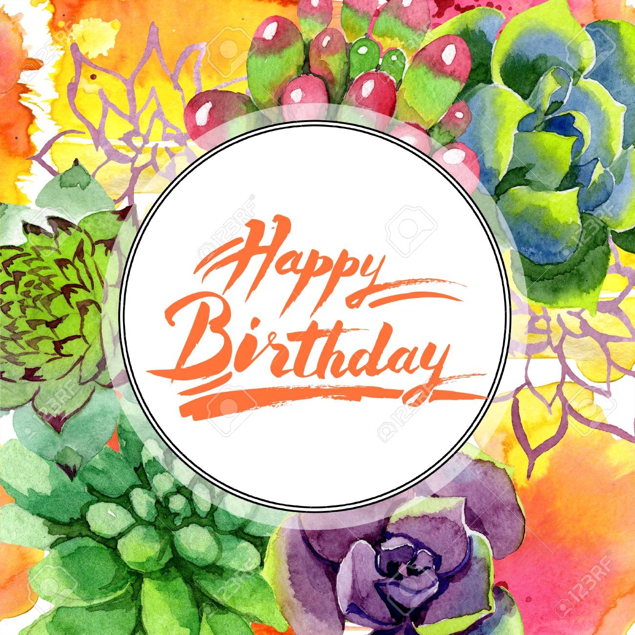 Amazing Succulent Happy Birthday Handwriting Monogram Calligraphy Stock Photo Picture And Royalty Free Image Image 113293791