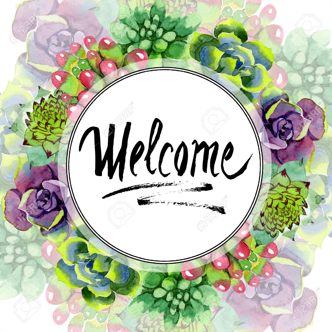 Amazing Succulent Welcome Handwriting Monogram Calligraphy Stock Photo Picture And Royalty Free Image Image 113293797