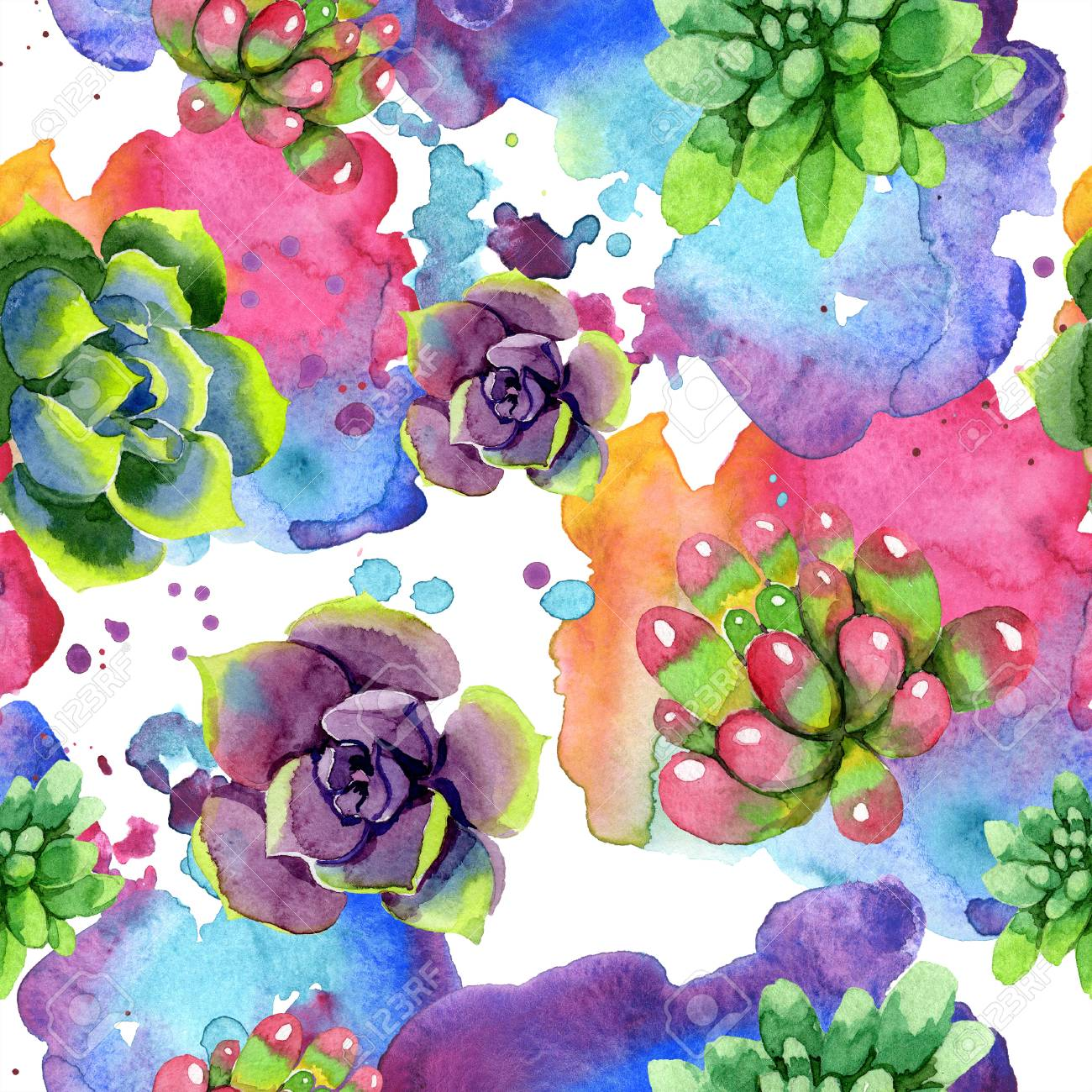 Amazing Succulent Floral Botanical Flower Watercolor Background Stock Photo Picture And Royalty Free Image Image 113293988