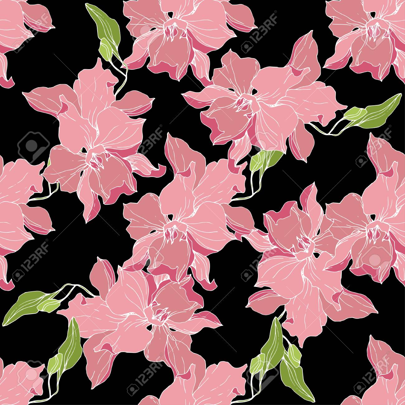 Vector Pink Orchid Floral Botanical Flower Seamless Background