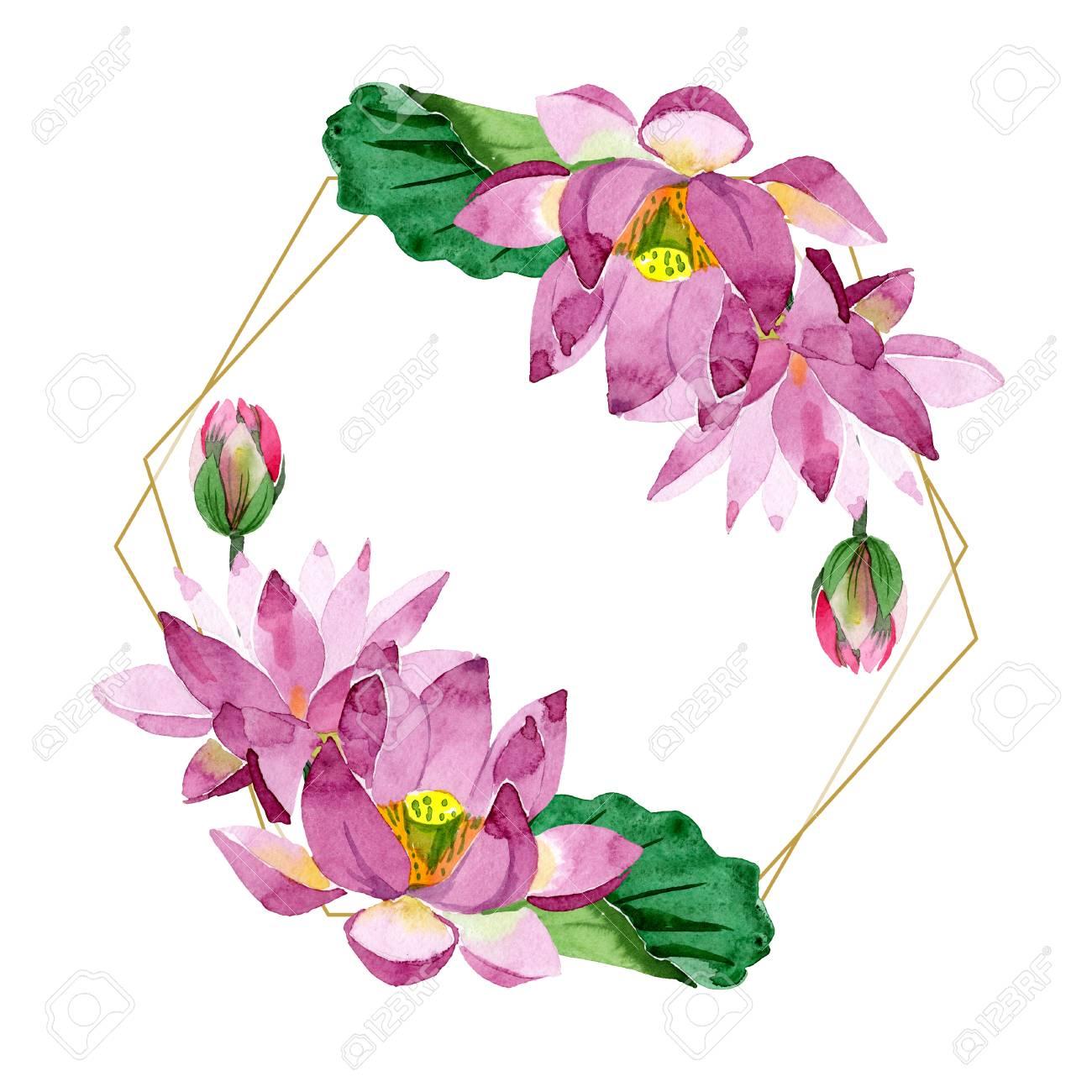 Purple Lotus Floral Botanical Flower Wild Spring Leaf Isolated