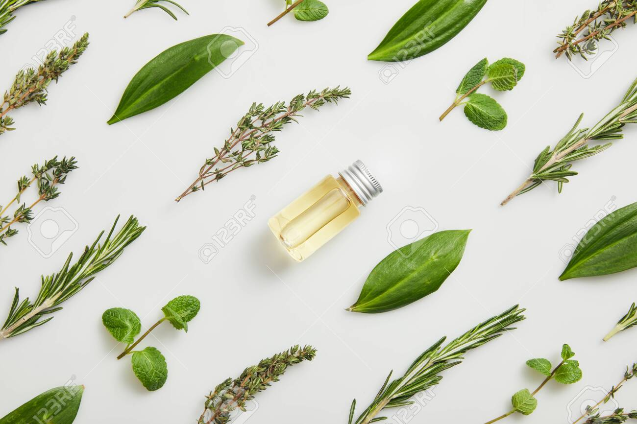Flat lay with essential oil and fresh herbs on grey background - 119042906