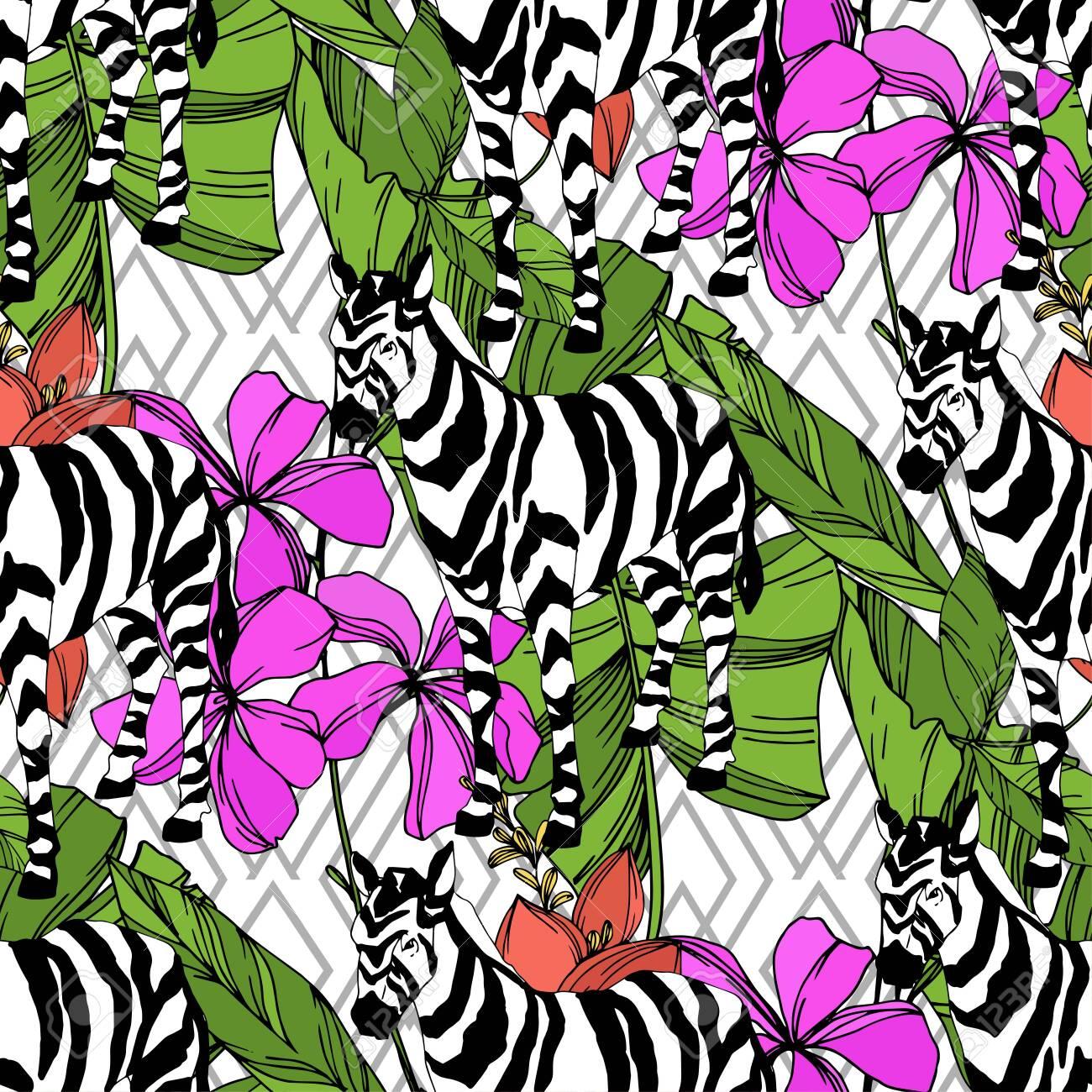 pink black and white zebra wallpaper