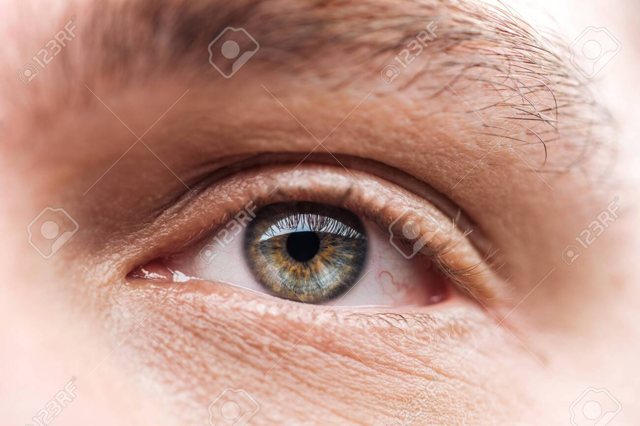 close up view of adult man eye with eyelashes and eyebrow looking away - 130301450