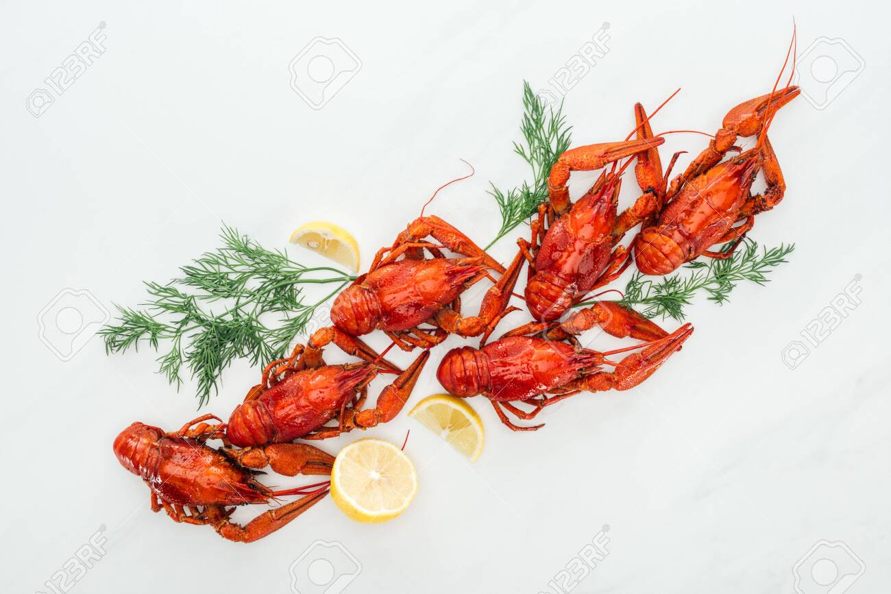 top view of red lobsters, lemon slices and green herbs on white background - 130310451
